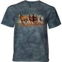 Fly Away Horses - The Mountain