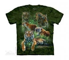 Jungle Tigers - Junior - The Mountain