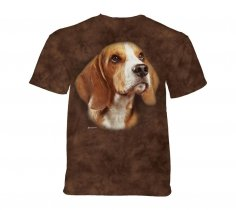 Beagle Portrait  - The Mountain - Junior