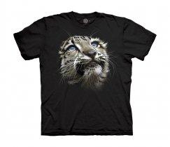 Snow Leopard Cub - The Mountain Junior