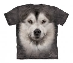 Alaskan Malamute Face - The Mountain - Junior