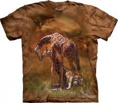 Giraffe Sunset - The Mountain