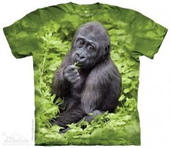 Kojo Western Lowland Gorilla - The Mountain