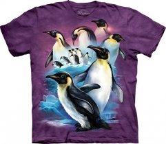 Emperor Penguins - The Mountain