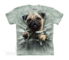 Pug Breakthru - The Mountain - Junior
