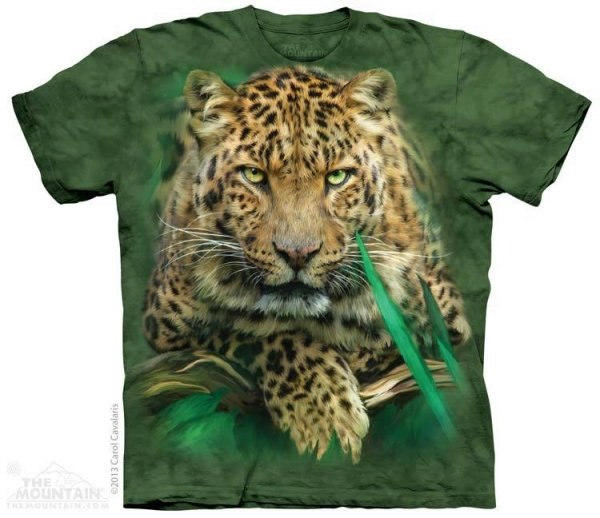Majestic Leopard - The Mountain