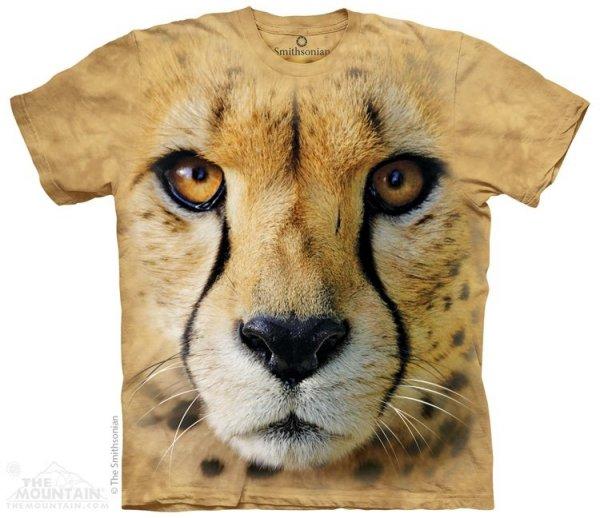 Big Face Cheetah - Gepard - The Mountain