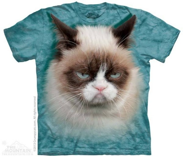 Grumpy Cat - The Mountain