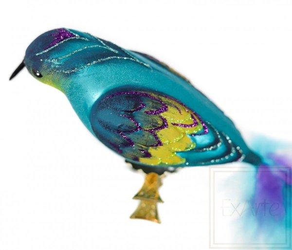 Ptak -W całej krasie