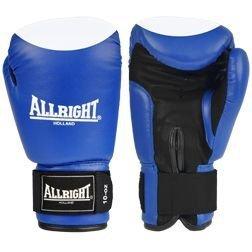 Rękawice bokserskie skóra - niebieskie