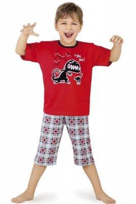 Cornette 541/17 I got... piżama chłopięca