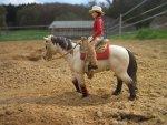 Konie Schleich - jak zrobić stajnię?