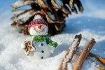 Zabawki na zimę. Co polecacie?