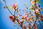 Wiosenna aura pobudzająca nas do działania