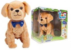 Piesek Interaktywny Goldie TM Toys 8275