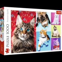 Puzzle Wesołe koty 1000 el. Trefl 10591