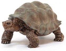 Żółw Gigant Figurka Schleich 14824