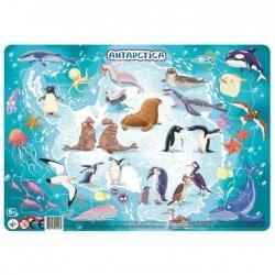 Puzzle Ramkowe Antarktyda 53 el. Dodo 300176