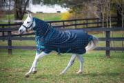 Derka padokowa AMIGO Pony Plus 50g - HORSEWARE - teal/silver