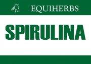 Spirulina 1 kg - EQUIHERBS