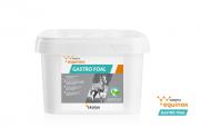 Yarrowia Equinox Gastro Foal 1kg