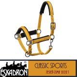 PRZEDSPRZEDAŻ Kantar PIN BUCKLE - Classic Sports A/W 21 - Eskadron - vintage gold
