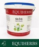 Głóg 0,5 kg - EQUIHERBS