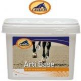 Suplement wspomagający prawidłowy rozwój stawów ARTI BASE 2kg - Cavalor