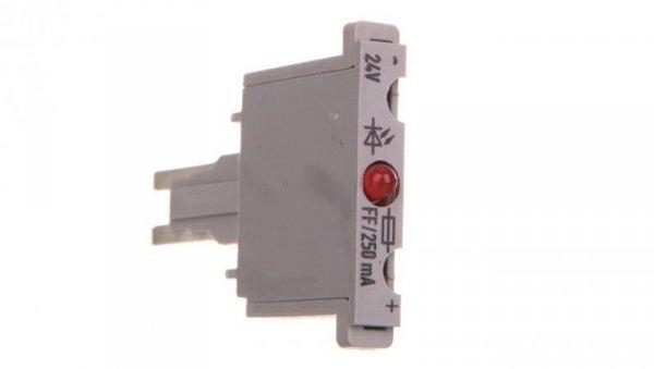 Wtyk bezpiecznikowy 250mA FF 280-850/281-413 /100szt./