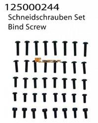 Bind Screw Set