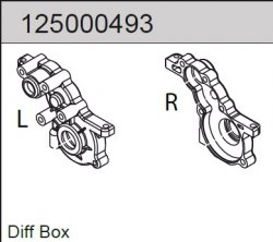 Differential Box Mad Rat