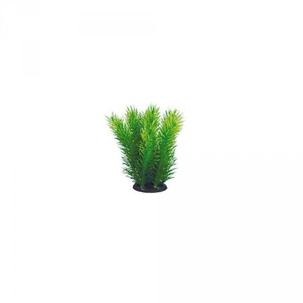 Aquael Roślina Kępkowa PR-402 4 (10cm)