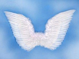 Skrzydła anioła białe 70x50cm
