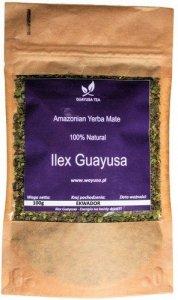 Ilex Guayusa