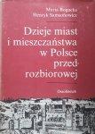 Henryk Samsonowicz, Maria Bogucka • Dzieje miast i mieszczaństwa w Polsce przedrozbiorowej