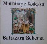 Janusz Podlecki, Marcin Fabiański • Miniatury z kodeksu Baltazara Behema