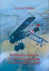 Andrzej Olejko • Działania lotnicze w pasie karpackim w latach 1914-1947