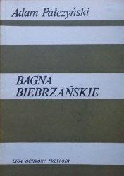 Adam Pałczyński • Bagna Biebrzańskie