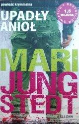 Mari Jungstedt • Upadły anioł