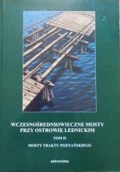 Wczesnośredniowieczne mosty przy Ostrowie Lednickim tom 2 • Mosty traktu poznańskiego