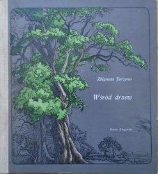Zbigniew Jerzyna • Wśród drzew [Józef Wilkoń]