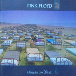 Pink Floyd • A Momentary Lapse of Reason • CD