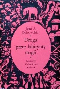 Józef Andrzej Dobrowolski • Droga przez labirynty magii [Giambattista della Porta]