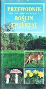 Ute Zimmer • Przewodnik do rozpoznawania roślin i zwierząt na wycieczce