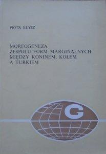 Piotr Kłysz • Morfogeneza zespołu form marginalnych między Koninem, Kołem a Turkiem