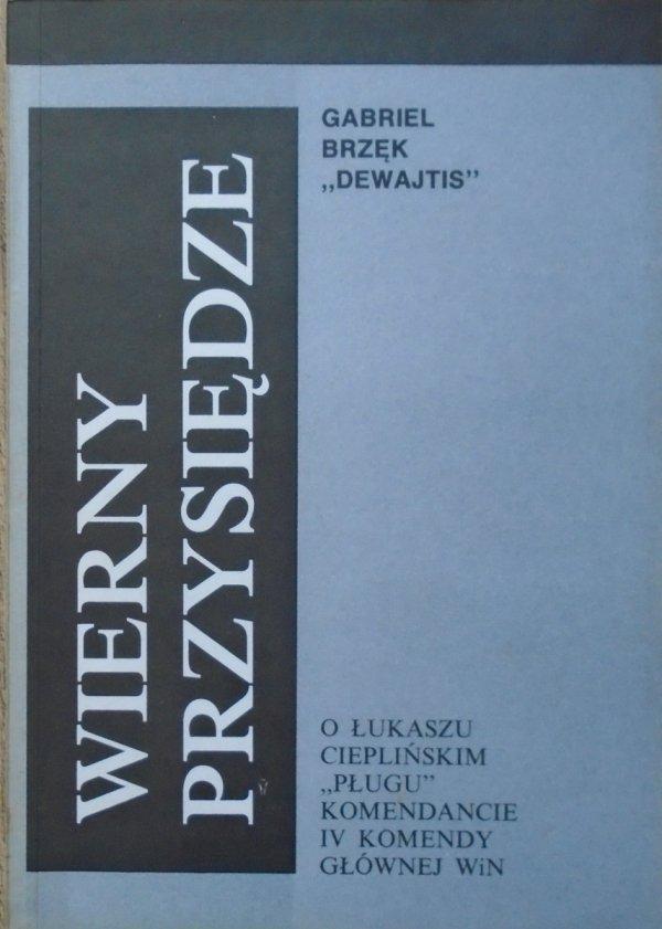 Gabriel Brzęk 'Dewajtis' • Wierny przysiędze. O Łukaszu Cieplińskim 'Pługu' komendancie IV Komendy Głównej WiN