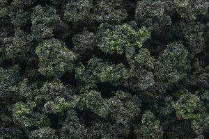 Woodland Scenics WFC1649 Forest Blend Underbrush 1L