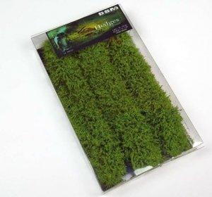 Bear`s Scale Modeling 300101 Hedges (3 PCS)