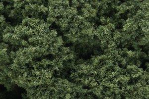 Woodland Scenics WFC58 Foliage Clusters Medium Green 0,83L