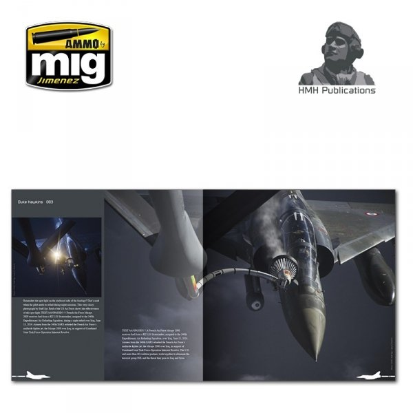 AMMO of Mig Jimenez DH-003 Aircraft in Detail: Dassault Mirage 2000